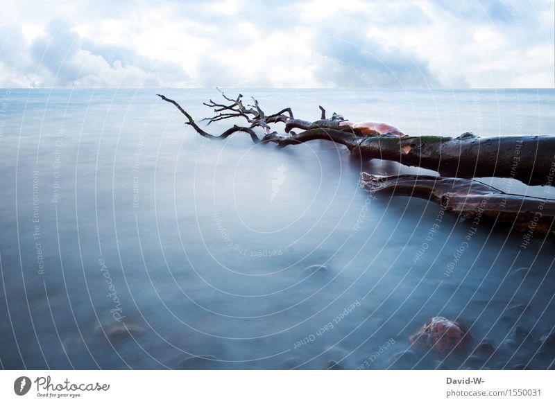 im Nebel versunken Umwelt Natur Landschaft Wasser Himmel Wolken Gewitterwolken Frühling Sommer Herbst Winter Klima Klimawandel Wetter Schönes Wetter