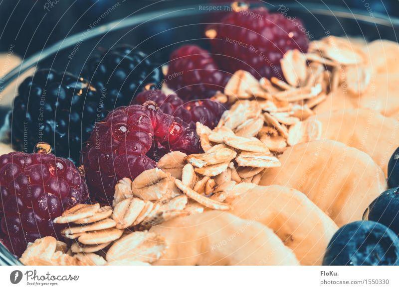 Müsli mit Früchten blau Gesunde Ernährung rot schwarz gelb natürlich Gesundheit Lebensmittel Frucht frisch genießen Fitness süß lecker Bioprodukte