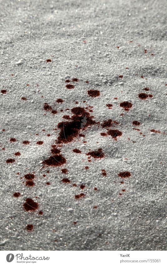 schneeweiß rot Winter dunkel kalt Schnee grau Eis gefährlich Tropfen Blut spritzen Schneeflocke Blutfleck