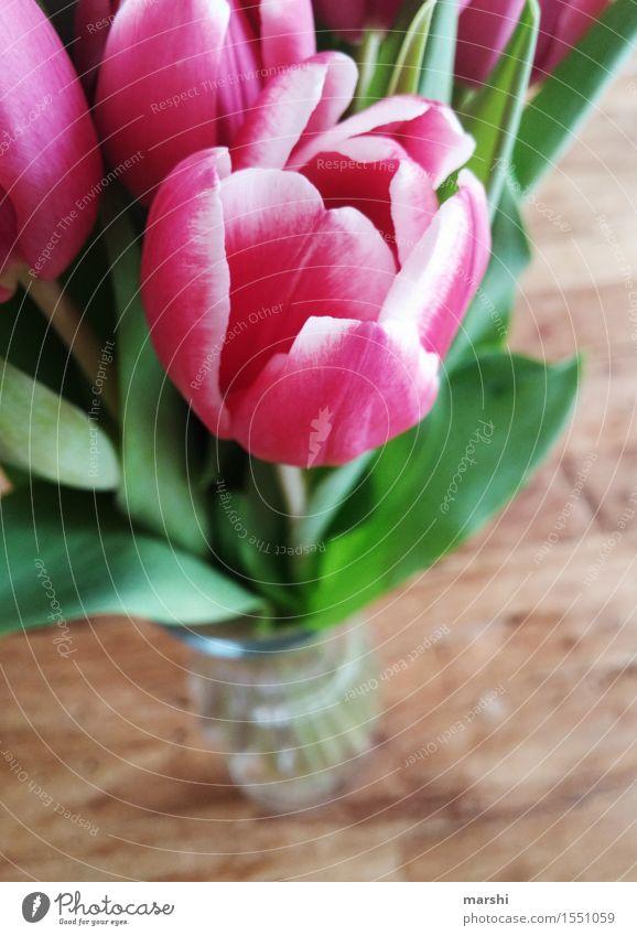 Tulpenstrauß Natur Pflanze Blume Gefühle Stimmung tulpenstrauß Blumenstrauß schön Blühend Blüte Tulpenblüte Holztisch Dekoration & Verzierung Frühling