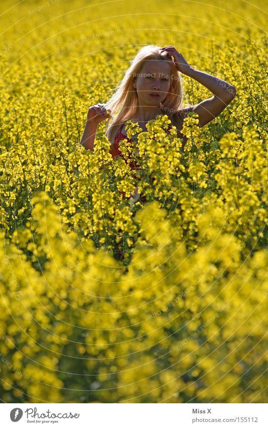 Ces im Feld Frau Natur Jugendliche Blume Sommer gelb Wiese Frühling Freiheit Haare & Frisuren Feld blond Erwachsene Wind frei Sträucher