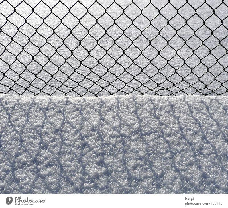 Maschendrahtzaun ... Zaun Draht Winter Januar Schnee kalt Licht Schatten Muster Strukturen & Formen schwarz weiß obskur Helgi