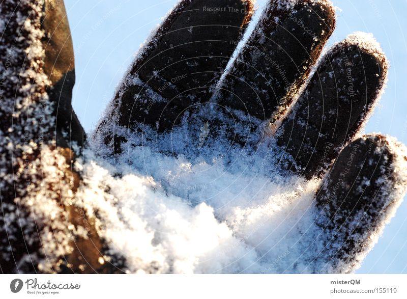 Take Me To The Place Where The Sun Goes Down. Mensch Hand Winter kalt Gefühle Schnee berühren Wissenschaften Konzentration Expedition Handschuhe forschen Arktis Sibirien Nordpol Schneeballschlacht