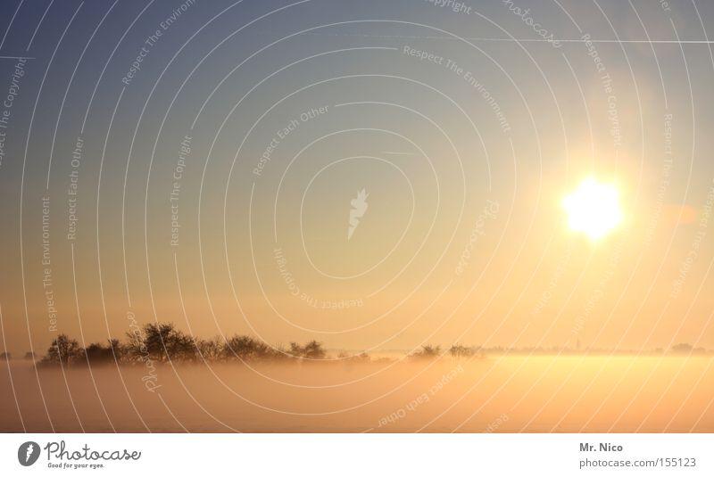 nebulös Natur Himmel Sonne Winter ruhig Landschaft Nebel Idylle Sonnenuntergang Planet Schleier Himmelskörper & Weltall Wäldchen Wintertag Bodennebel