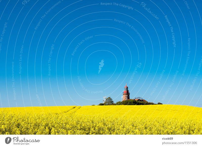 Der Leuchtturm von Bastorf Natur Ferien & Urlaub & Reisen blau Sommer Erholung Landschaft gelb Architektur Küste Tourismus Feld Idylle Landwirtschaft