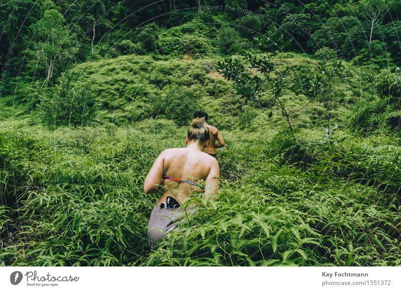 ° Mensch Natur Ferien & Urlaub & Reisen Jugendliche Pflanze Sommer Junge Frau Baum Junger Mann 18-30 Jahre Erwachsene Umwelt Leben feminin Freiheit Paar