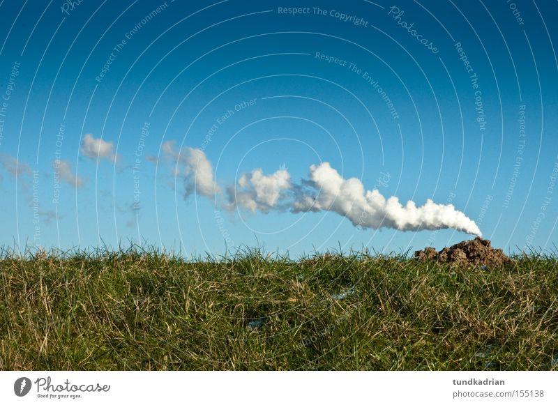 Der Maulwurf qualmt Himmel blau grün Wiese Rauch Zigarette Abgas Emission Maulwurf