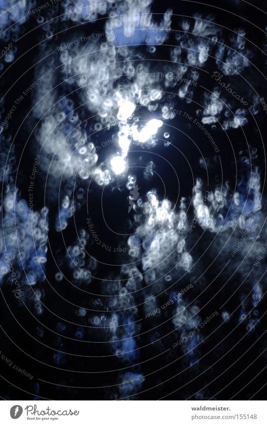 Zweige im Mondlicht blau Hintergrundbild Fleck Lichtspiel scheckig Schattenspiel Lichtschein Mondschein Lichtfleck Spiegellinsenobjektiv (Effekt)
