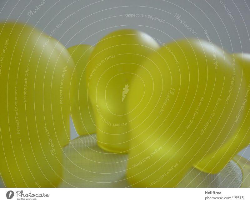 Noppen [2] gelb Fototechnik Bürste Makroaufnahme