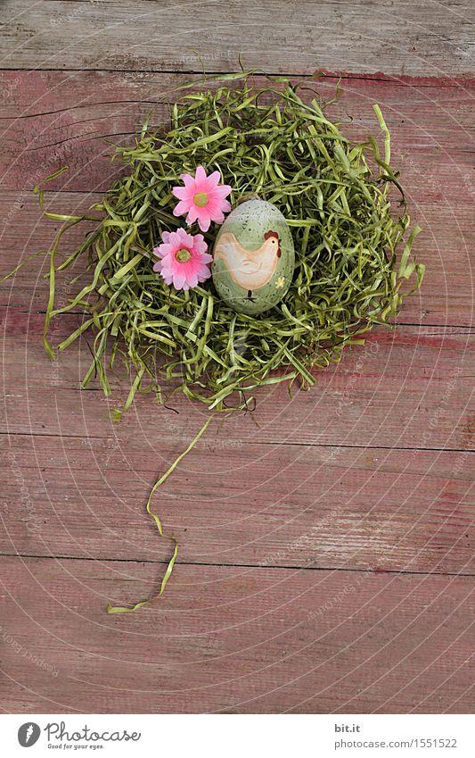 Gockelei Feste & Feiern Ostern Dekoration & Verzierung Religion & Glaube Tradition Osterei Osterhase Osternest Nest Moos Gras Holz altehrwürdig Blume Blüte