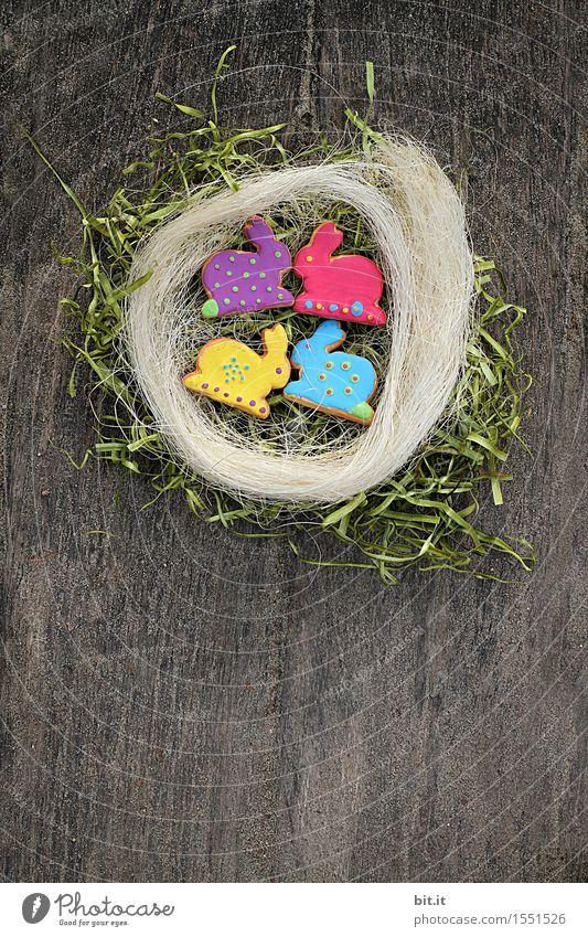 Osterquartett Frühling Gras Religion & Glaube Lifestyle Holz Garten Feste & Feiern Design Dekoration & Verzierung Tisch Zeichen Ostern Süßwaren Spielzeug Tradition Backwaren