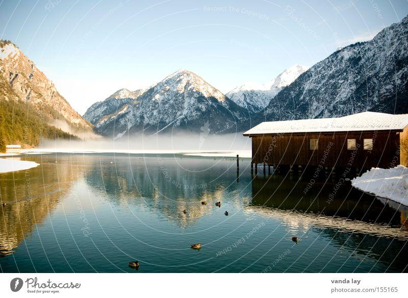 Heiterwanger See VIII Bootshaus Winter Stimmung kalt Nebel Berge u. Gebirge Reflexion & Spiegelung Ente Schnee gefroren Spaziergang Landschaft Alpen Österreich