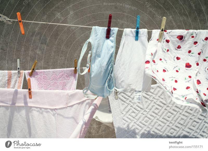 der wäschetrockner Wäsche trocknen Wäscheklammern hängen Sommer aufhängen Detailaufnahme drying