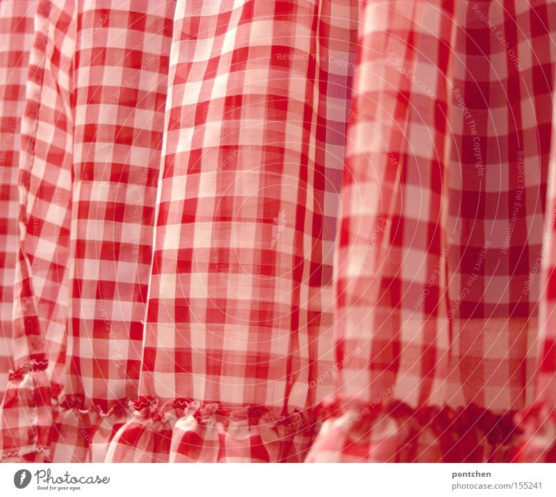 Ein rot-weiß karierter Vorhang. Gardine. Rüschen. Altmodisch Stil Design Häusliches Leben Wohnung Dekoration & Verzierung Raum Wohnzimmer Schlafzimmer Küche Bad