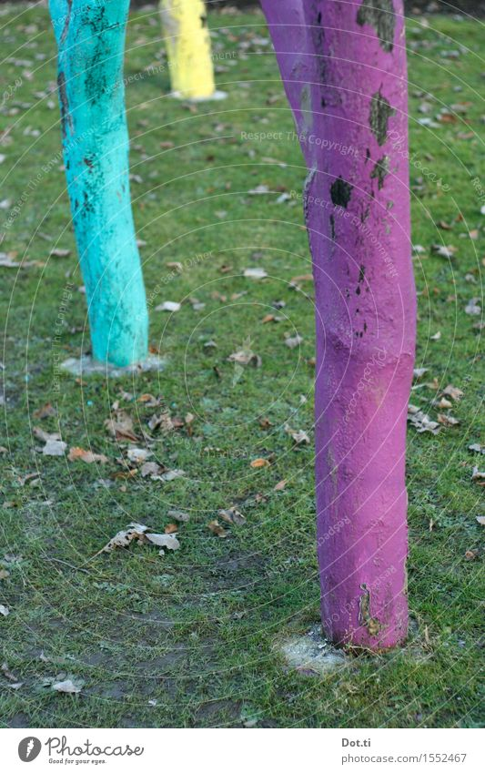 CMY Baum Gras Garten Wiese außergewöhnlich Fröhlichkeit lustig verrückt mehrfarbig gelb violett türkis Baumstamm bemalt Farbe Baumrinde 3 seltsam Farbfoto