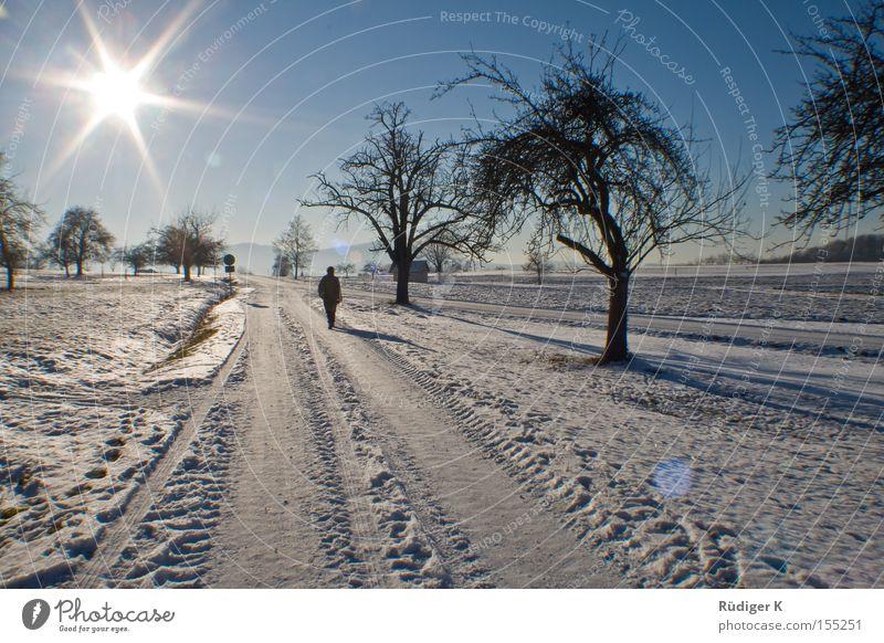Allein spazieren Einsamkeit Schnee Sonne Himmel Baum Wege & Pfade Gegenlicht 7 Mensch Spaziergang Winter Tiefenbachtal Sterneffekt