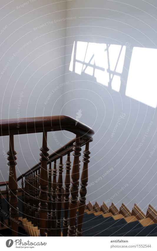 aufwärts oder abwärts Sommer Haus Wand Innenarchitektur natürlich Holz Mauer braun gehen Wohnung Büro Treppe Fröhlichkeit Lebensfreude Geländer Treppenhaus