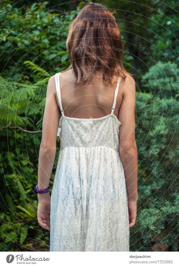 Neugierig schaut ein Mädchen in einem weißen Sommerkleid in Grüne Büsche. Freude Zufriedenheit Waldrand feminin Rücken 1 Mensch 8-13 Jahre Kind Kindheit Natur