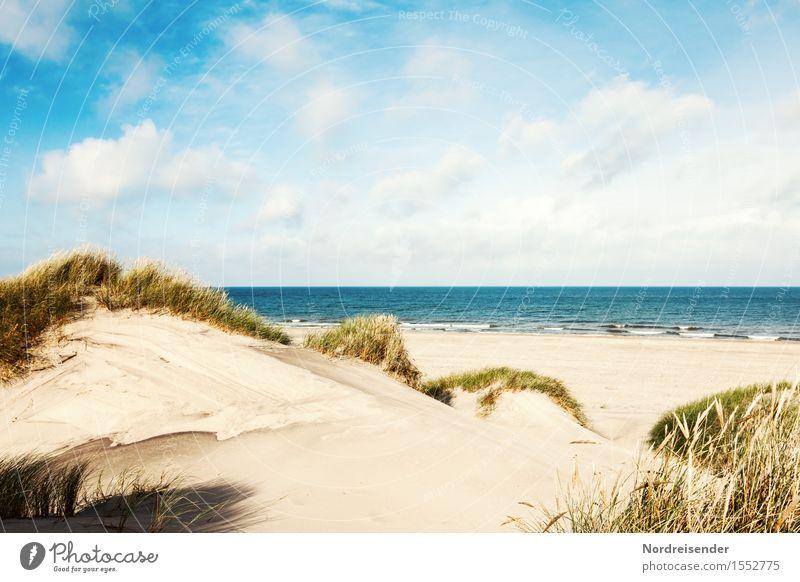 Sommer in den Dünen Natur Ferien & Urlaub & Reisen Sommer Wasser Sonne Meer Landschaft Wolken Ferne Strand Gras Freiheit Sand Horizont Tourismus Idylle