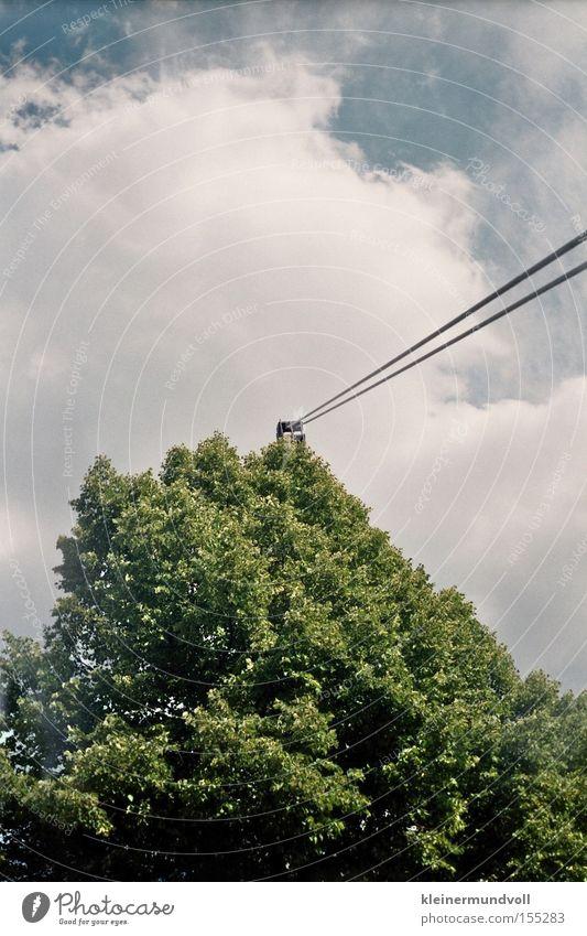 Seilschaften Baum Blatt Drahtseil Spannung Himmel Wolken Maibaum Lomografie