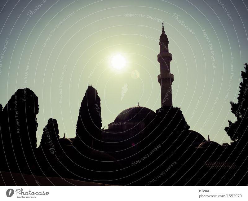 Moschee im Gegenlicht Himmel Sonne Sonnenlicht Frühling Schönes Wetter Baum Park Stadt Kirche Dom Bauwerk Gebäude Architektur Sehenswürdigkeit Wahrzeichen Stein