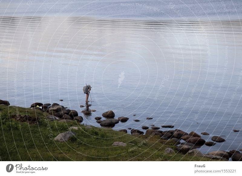 Krebse angeln Angeln Ferien & Urlaub & Reisen Sommer feminin Mädchen 1 Mensch 8-13 Jahre Kind Kindheit Natur Wasser Ostsee Kleid Käscher fangen stehen Freude