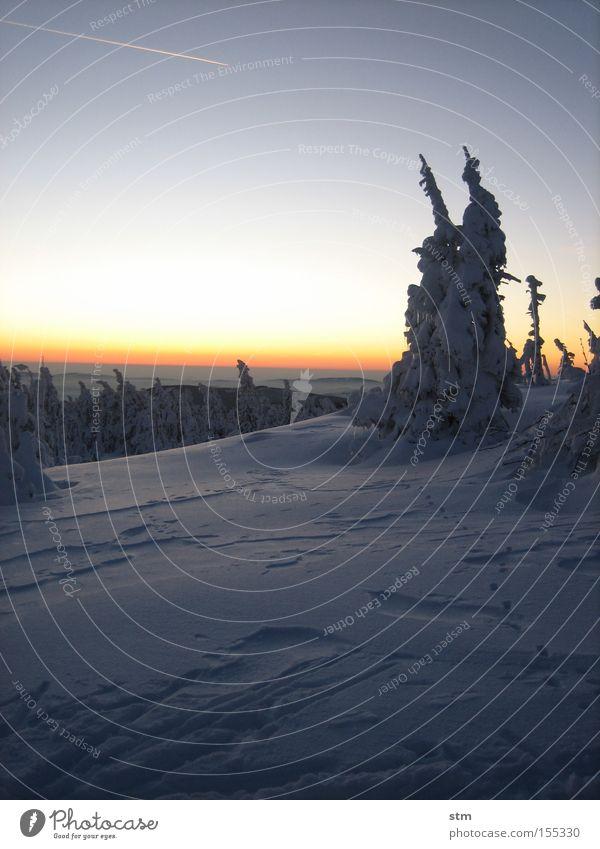 märchenwald Wald Baum Hügel Berge u. Gebirge Dämmerung Winter Winterstimmung Sonnenuntergang Romantik Schneewehe Textfreiraum Vor hellem Hintergrund Horizont