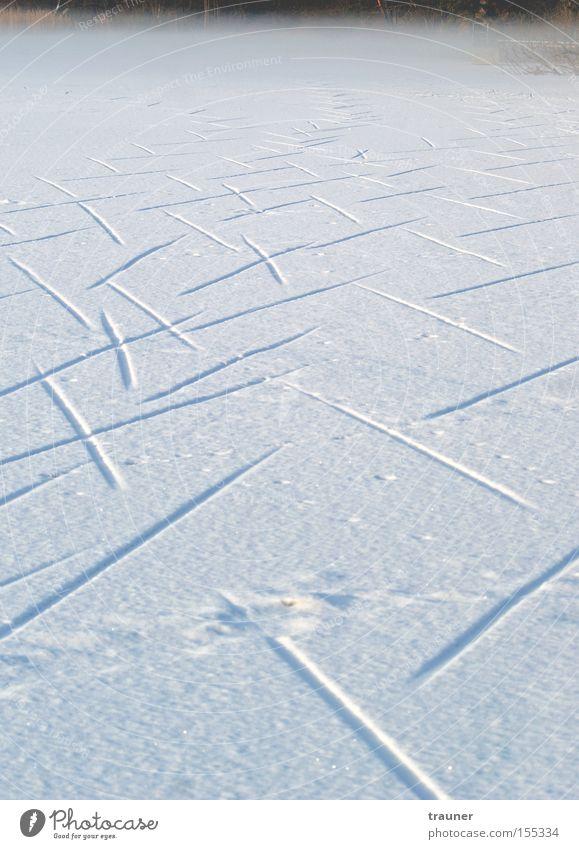 Walk on, Walk on! Winter See Nebel Schnee Eis Spuren gefroren Fährte kalt dunkel Wege & Pfade leer
