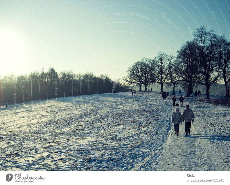 Winterspaziergang Mensch Baum Sonne kalt Schnee Wege & Pfade Eis gehen laufen Laufsport Spaziergang Spuren Glätte Licht