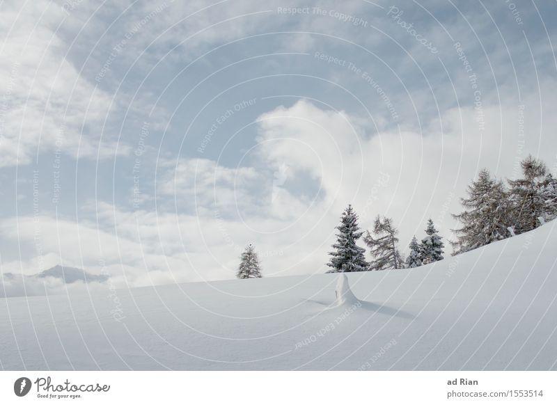 Frühling Skipiste Natur Landschaft Himmel Wolken Winter Schönes Wetter Eis Frost Baum Grünpflanze Wildpflanze Hügel Alpen Berge u. Gebirge Gipfel