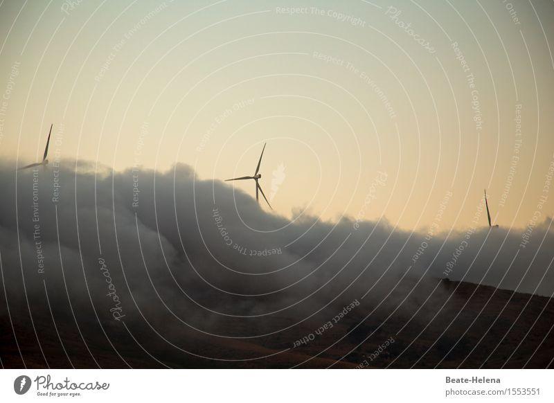 Total vernebelt Natur Wolken gelb Bewegung außergewöhnlich Arbeit & Erwerbstätigkeit Wetter Nebel ästhetisch Energiewirtschaft Kraft Gipfel Urelemente