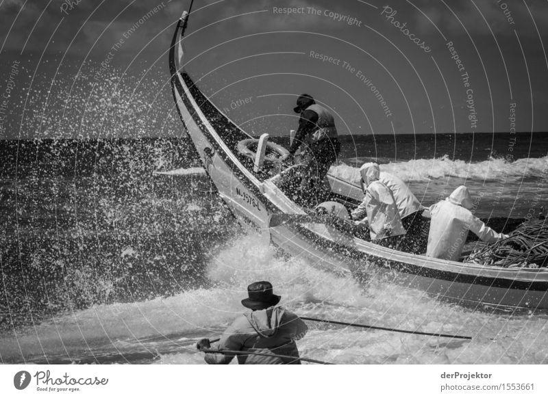 Fischerei in Vieira Leiria 7 Natur Ferien & Urlaub & Reisen Pflanze Sommer Wasser Meer Tier Strand Umwelt Küste Arbeit & Erwerbstätigkeit Tourismus Wellen Kraft