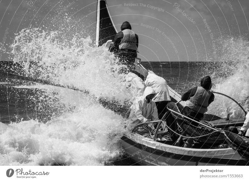 Fischerei in Vieira Leiria 10 Natur Ferien & Urlaub & Reisen Pflanze Sommer Meer Tier Ferne Umwelt Küste Arbeit & Erwerbstätigkeit Tourismus Wellen Kraft