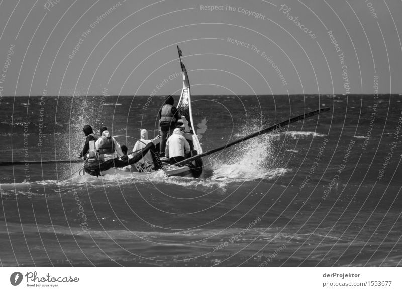 Fischerei in Vieira Leiria 3 Ferien & Urlaub & Reisen Tourismus Ausflug Abenteuer Ferne Freiheit Arbeit & Erwerbstätigkeit Beruf Landwirtschaft Forstwirtschaft