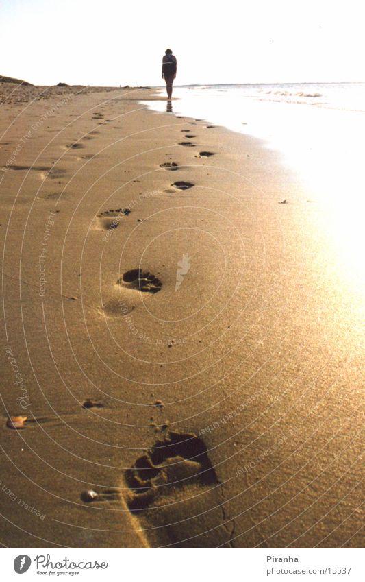 Spuren im Sand Meer Strand Sand Spuren Fußspur