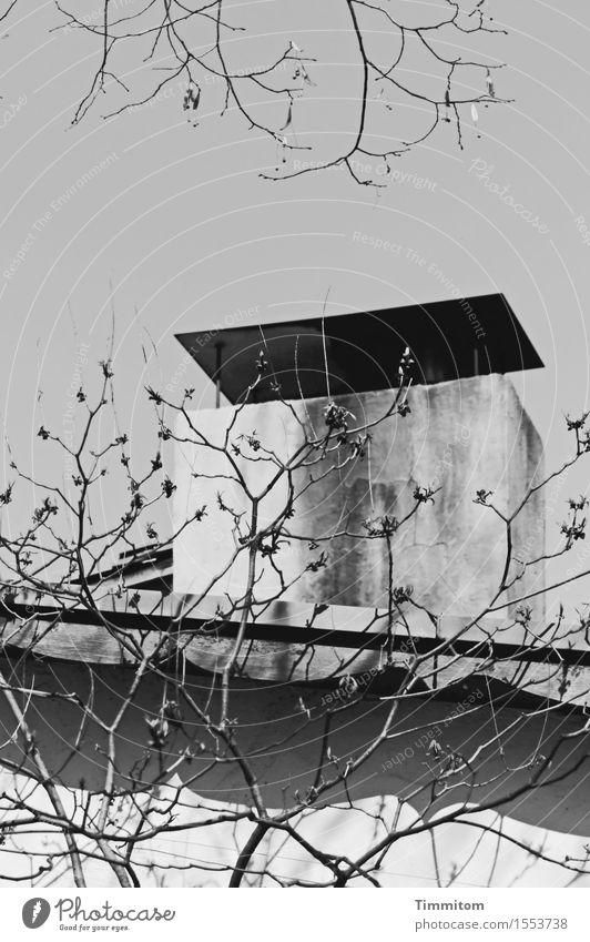 Revisited. weiß Haus schwarz Wand Mauer grau ästhetisch Ast kahl Kamin