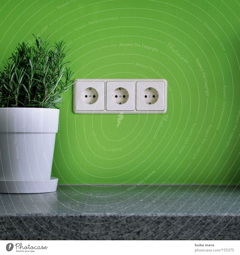öko strom weiß grün Pflanze Energie Elektrizität Küche Kräuter & Gewürze Bioprodukte ökologisch Topf Biologische Landwirtschaft Haushalt nachhaltig Steckdose