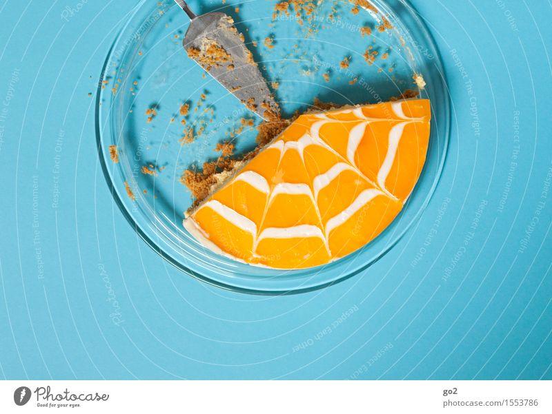 Kuchen 3 blau Freude gelb Essen Feste & Feiern Lebensmittel Frucht orange Geburtstag Ernährung Orange ästhetisch genießen Lebensfreude süß rund