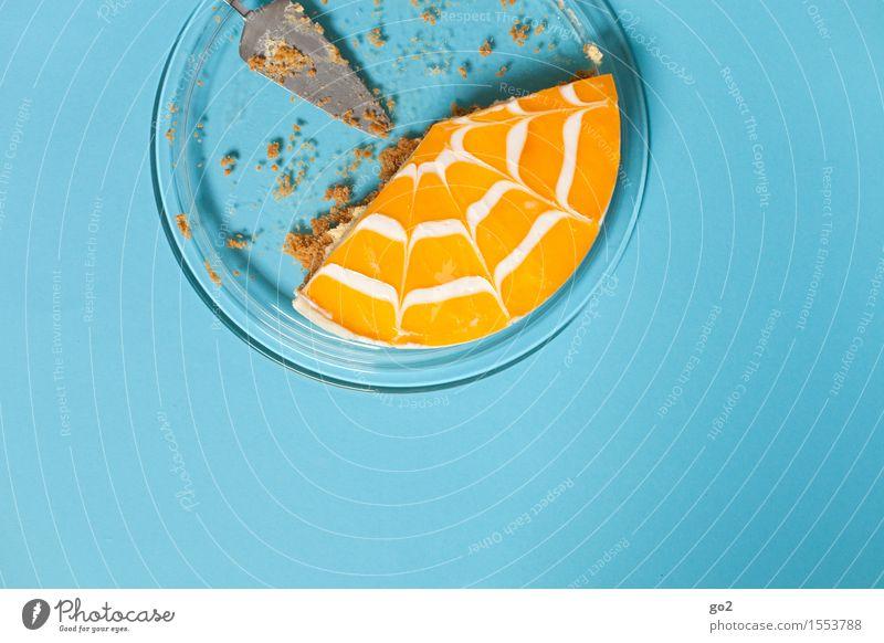 Kuchen 2 Lebensmittel Frucht Orange Dessert Mandarine Ernährung Essen Kaffeetrinken Teller Kuchengabel Feste & Feiern Muttertag Ostern Geburtstag ästhetisch