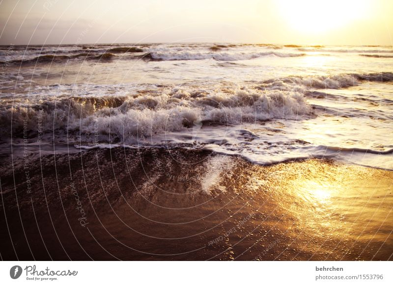 spritzig Himmel Ferien & Urlaub & Reisen schön Meer Landschaft Erholung Wolken Strand Ferne Küste Freiheit Schwimmen & Baden Tourismus Horizont träumen Wellen