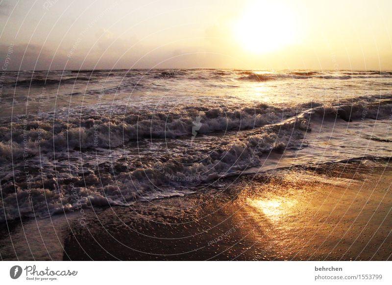 buenos dias COCTA RICA Himmel Ferien & Urlaub & Reisen schön Sommer Meer Landschaft Wolken Ferne Strand Frühling Küste Freiheit Horizont orange Tourismus