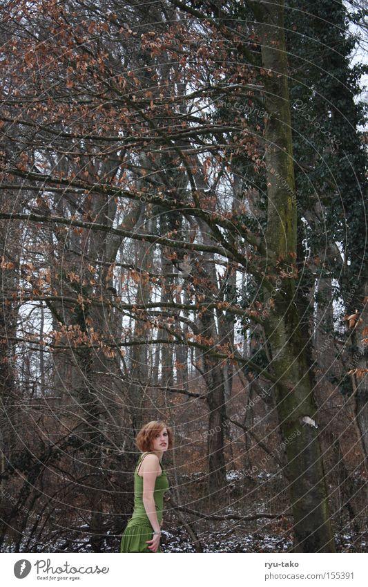 Letzter Rückblick Frau Baum grün Winter Blatt Wald kalt Schnee Kleid gestreift