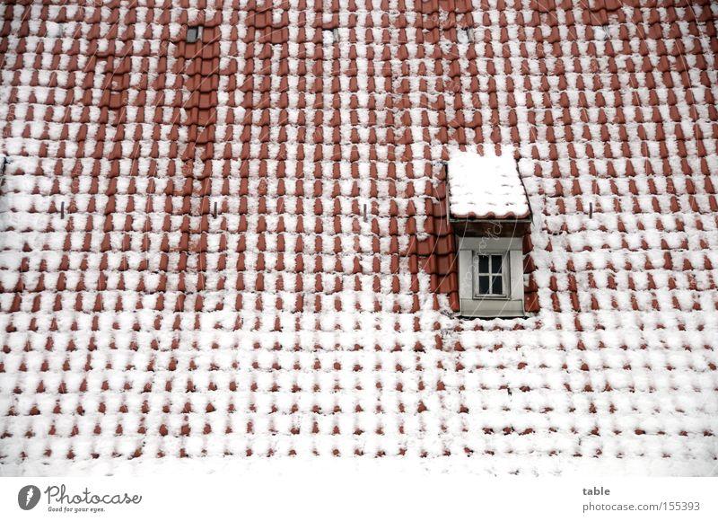 Tauwetter Dach Fenster Winter Dachziegel Dachgaube alt Dorf rot weiß kalt Gefühle Architektur Schnee verrückt Fensterscheibe Glas