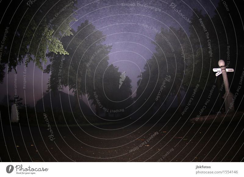 Frohe Ostern Umwelt Natur Nachthimmel Sommer schlechtes Wetter Nebel Baum Allee Dorf Verkehr Verkehrswege Straße Straßenkreuzung Wegkreuzung Verkehrszeichen
