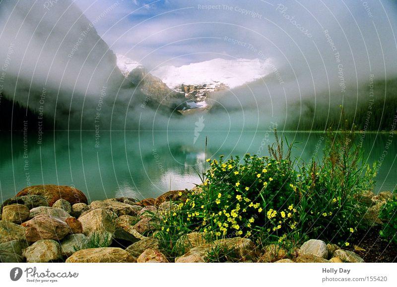 Rentnerkitsch Wasser Blume Wolken Schnee Berge u. Gebirge See Nebel Gipfel Reflexion & Spiegelung Kanada Schleier Gewässer Alberta Rocky Mountains