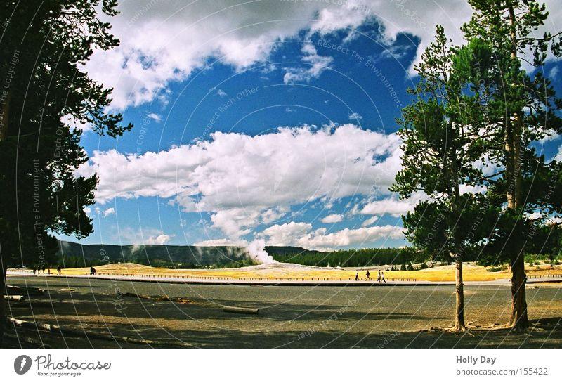 Entspannungsphase Baum Geysir Explosion Erholung Nationalpark Wasserdampf Wolken Durchblick Publikum ruhig Pause Aussicht Vulkan Sommer USA Himmel