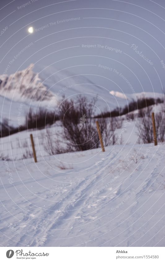 Rondane II Landschaft Nachthimmel Mond Winter Eis Frost Schnee Sträucher Gipfel träumen Ferne Unendlichkeit wild blau Vorfreude Vertrauen ruhig Fernweh