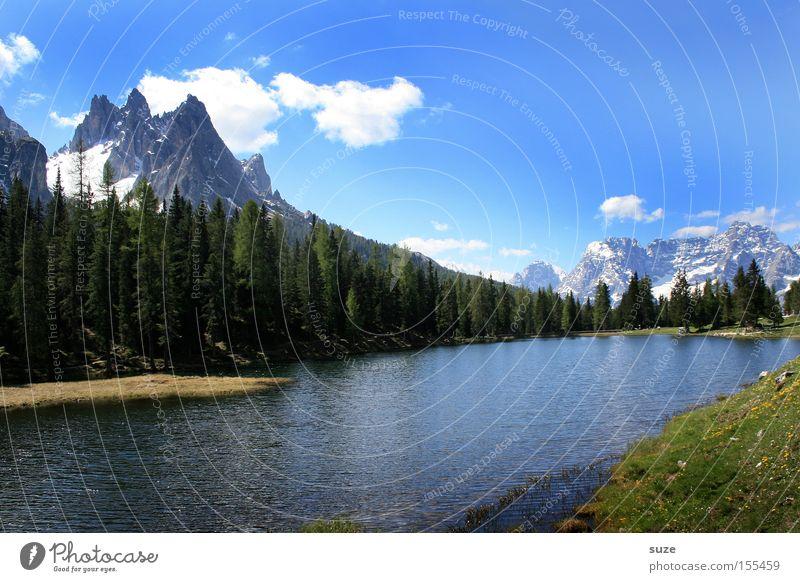 Bergsee Ferien & Urlaub & Reisen Berge u. Gebirge Umwelt Natur Landschaft Urelemente Himmel Sommer Klima Schönes Wetter Baum Wiese Wald Alpen Gipfel
