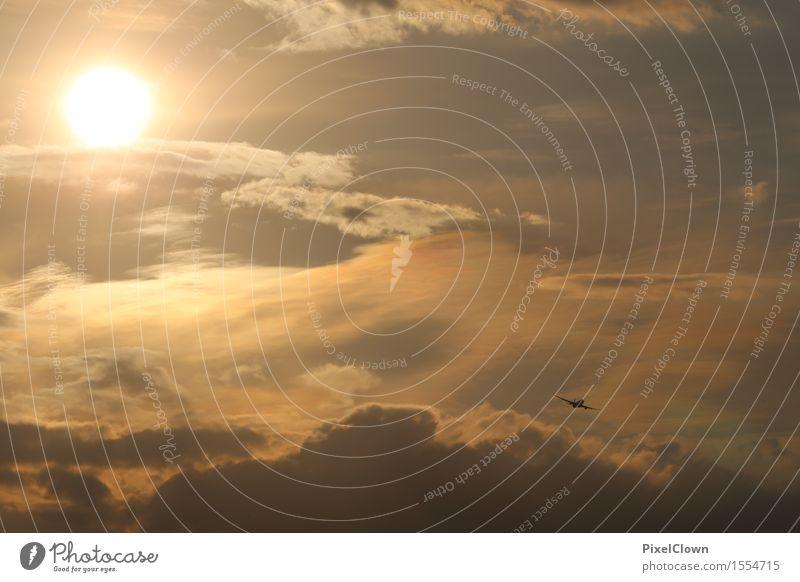 Fernweh Himmel Ferien & Urlaub & Reisen Ferne Umwelt Freiheit fliegen Stimmung Horizont orange Tourismus Freizeit & Hobby Verkehr Luftverkehr Ausflug Flugzeug