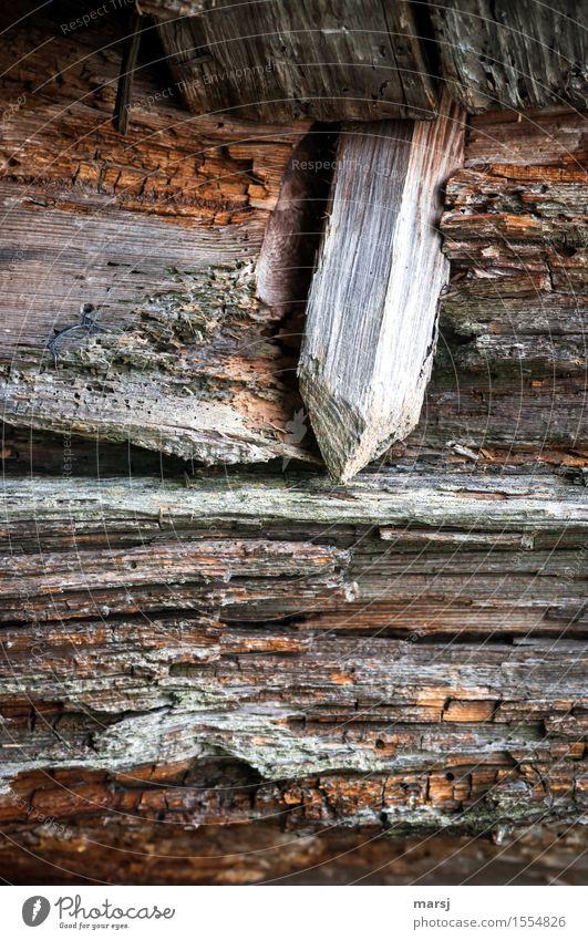 Das verbindende Element Arbeit & Erwerbstätigkeit Holzzapfen Zapfen Balken alt eckig einfach braun Sicherheit Vernetzung Holzdübel Dübel Rechteck Verfall